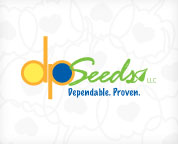 DP Seeds