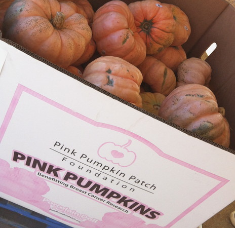 Grosse Pointe Retailers Sell Pink Pumpkins to Fund Breast Cancer Research