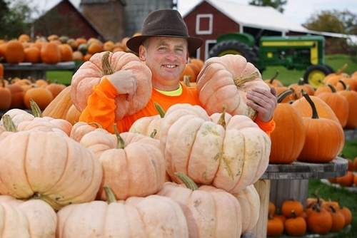 DeKalb man sells pink pumpkins for a good cause