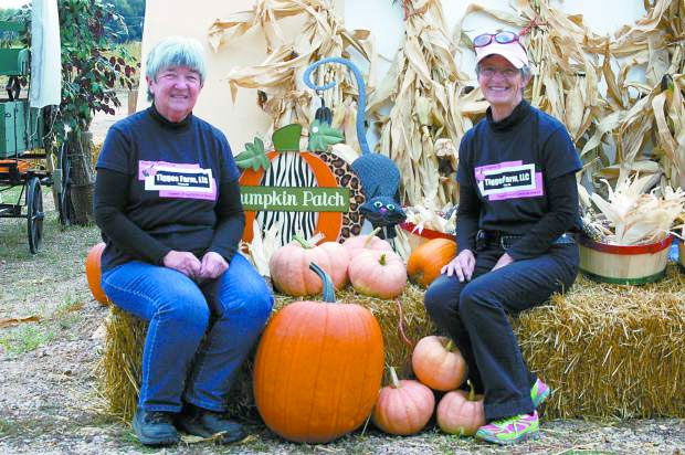 Passionately Pink: Tigges Farm grows pastel pumpkins to fight cancer